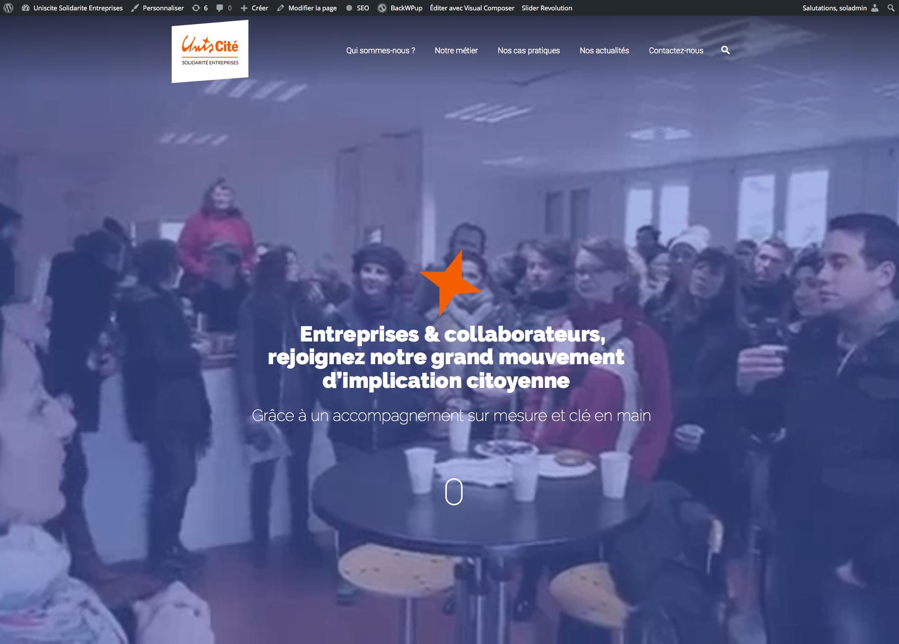 Unis-Cité Solidarité Entreprise